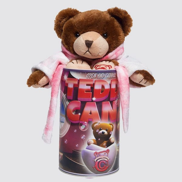 Teddy Canz! A New Spin To An Old Favorite – the Teddy Bear