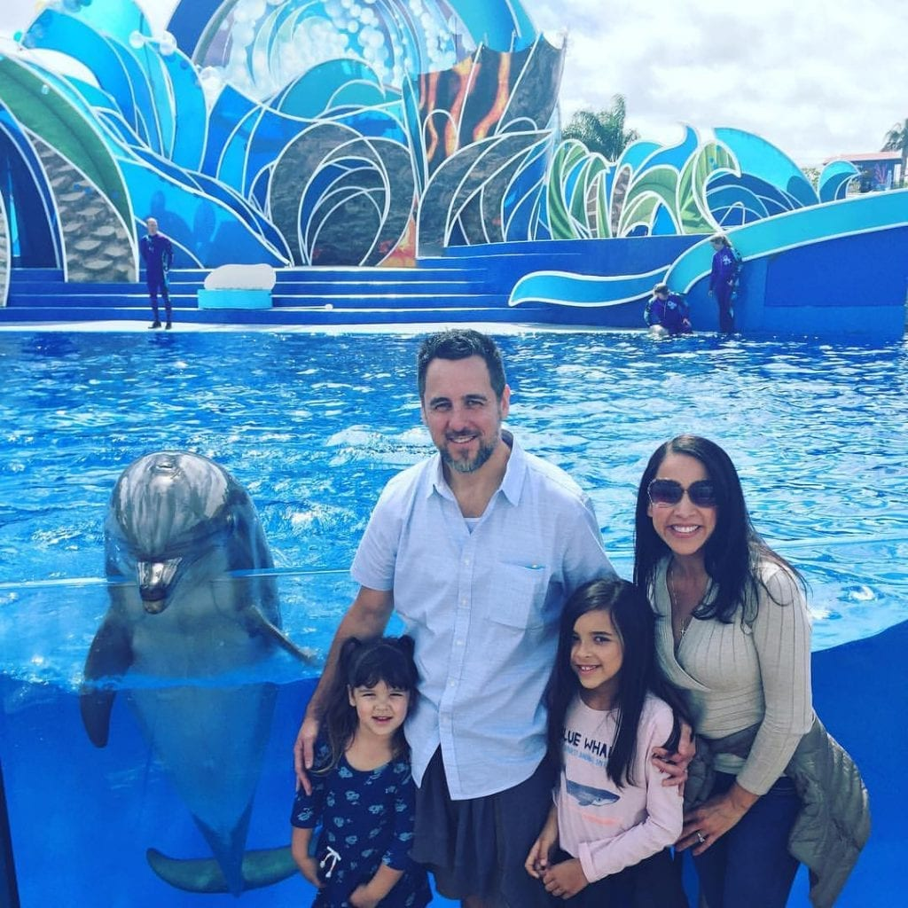 The New SeaWorld! It's Worth Seeing!